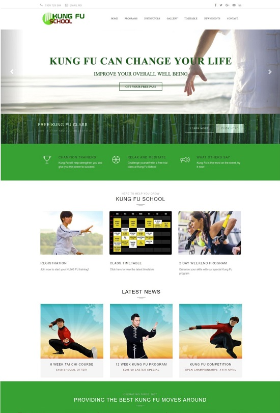 website-design-kungfu-550